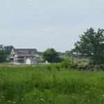 53rdgettlh-wheatfield-008