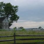53rdgettlh-wheatfield-032